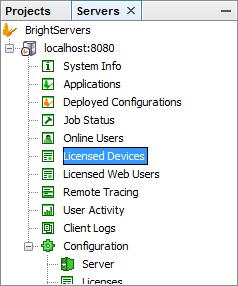 BrightXpress Licensing Model